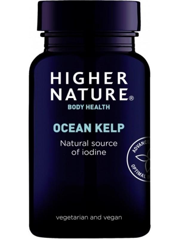 Ocean Kelp pruunvetikas 180 tab