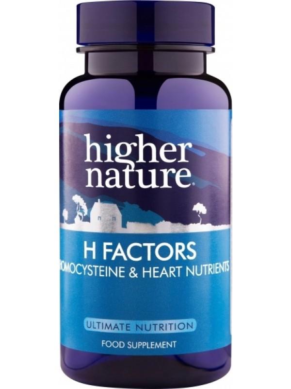 H factors 60 kaps