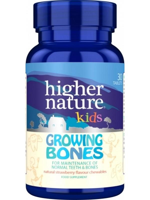 Growing bones laste luudele ja hammastele 90 tab
