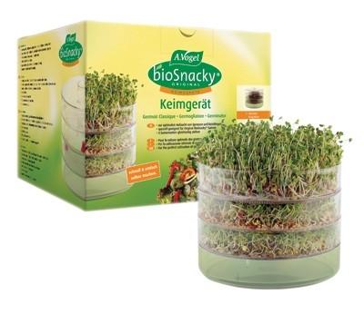 A.Vogel  seemnete idandamisnõu (kolmekorruseline)